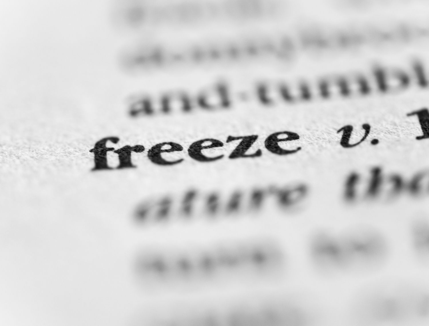 What is the Freeze Response?